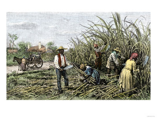 an analysis of slavery in south - slavery in the south a large majority of whites in the south supported slavery even though fewer of a quarter of them owned slaves because they felt that it was a necessary evil and that it was an important southern institution.